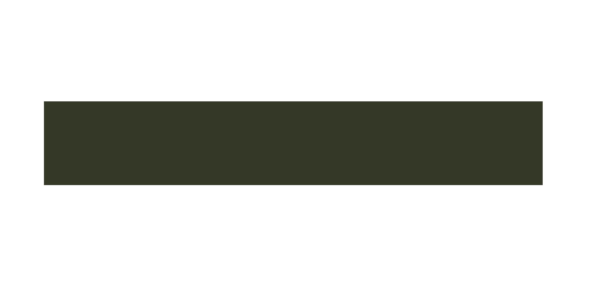 Jon DiNapoli